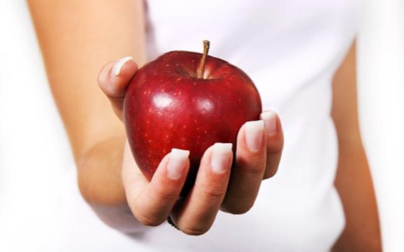 dieta, Verdaderos significados de la dieta