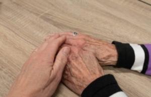 Alzheimer, Cómo afecta el Alzheimer nuestro cerebro
