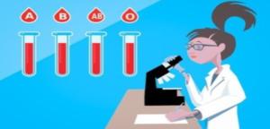 disruptores endocrinos, ¿Cómo evitar los disruptores endocrinos?