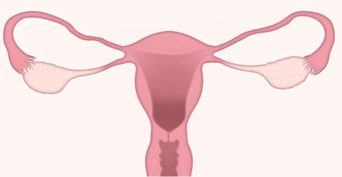 Problemas frecuentes con la menopausia