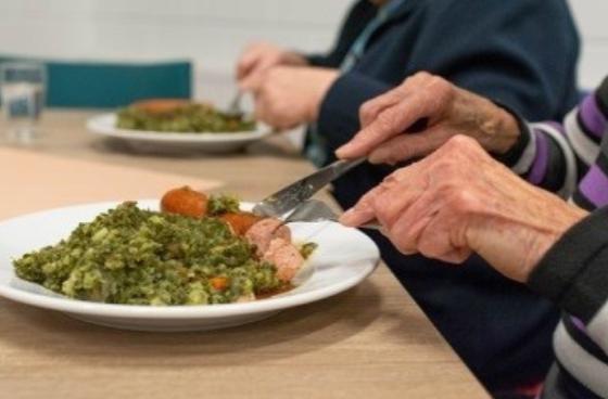 Problemas y enfermedades que pueden provenir de una mala nutrición en adultos mayores